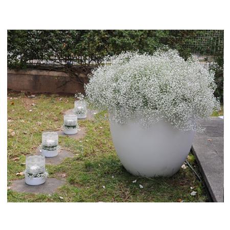 fleria διακλοσμηση γάμου-wedding decoration baby's breath