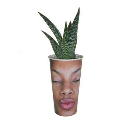 Αραπίνα-Με-Φυτό