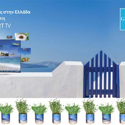 βότανα-σε-κουτί-greek-herbs-in-a-can-herbs-βότανα-how-to-plan-fleria-corporate-gift-εταιρικά-δώρα-greek-aroma-άρωμα-ελλάδας-samsung1