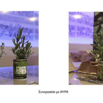 βότανα-σε-κουτί-greek-herbs-in-a-can-herbs-βότανα-how-to-plan-fleria-corporate-gift-εταιρικά-δώρα-greek-aroma-άρωμα-ελλάδας4