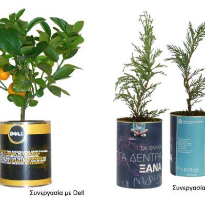βότανα-σε-κουτί-greek-herbs-in-a-can-herbs-βότανα-how-to-plan-fleria-corporate-gift-εταιρικά-δώρα-greek-aroma-άρωμα-ελλάδας5
