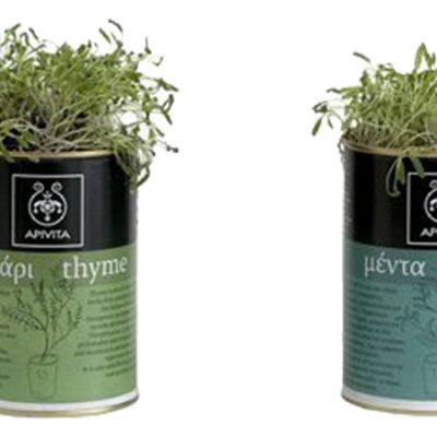 βότανα-σε-κουτί-greek-herbs-in-a-can-herbs-βότανα-how-to-plan-fleria-corporate-gift-εταιρικά-δώρα-greek-aroma-apivita