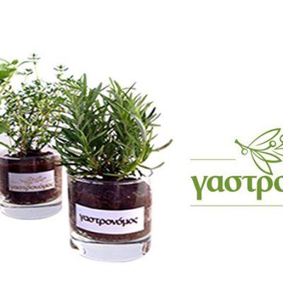 γυάλινο-βάζο-glass-vase-how-to-plan-fleria-corporate-gift-εταιρικά-δώρα-γαστρονόμος