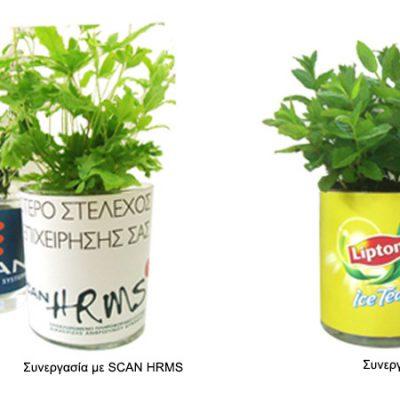 γυάλινο-βάζο-glass-vase-how-to-plan-fleria-corporate-gift-εταιρικά-δώρα