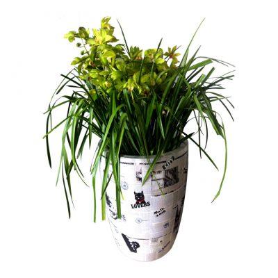 large-pot2