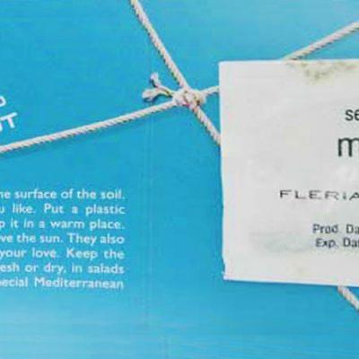 seeds-σπόροι-mint-μέντα-how-to-plan-fleria1-corporate-gift-εταιρικά-δώρα fleria